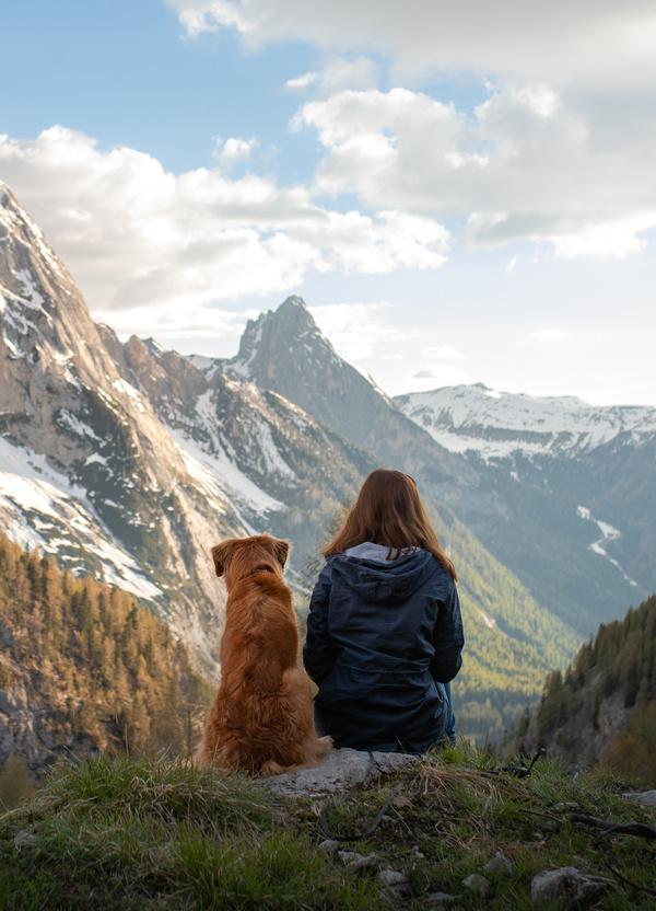 Frau und Hund sitzen mit Rücken zum Betrachter und schauen auf ein herbstliches Bergpanorama