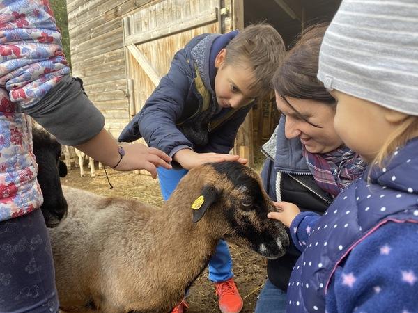 Kinder streicheln eine Ziege bei der Tierschutzführung am Cobenzl