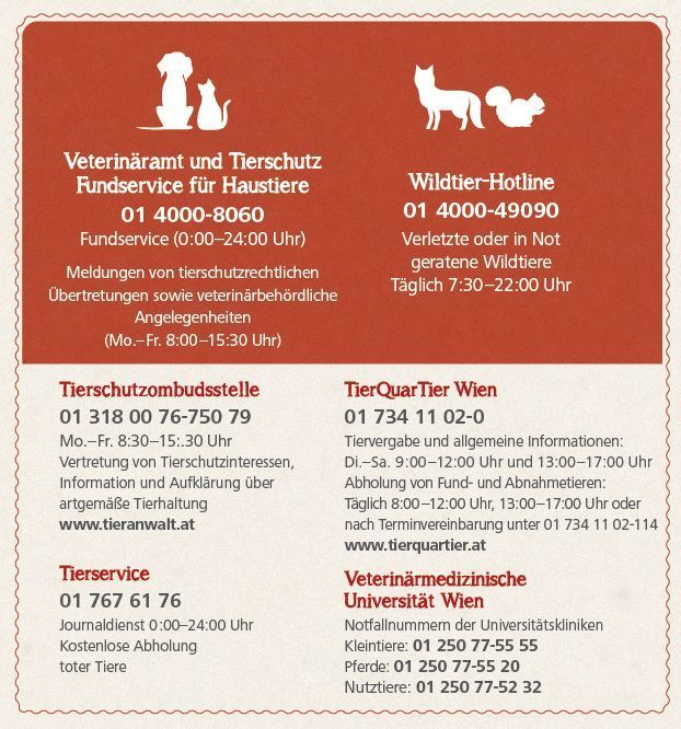 Übersicht mit Kontaktdaten der Tierservices der Stadt Wien