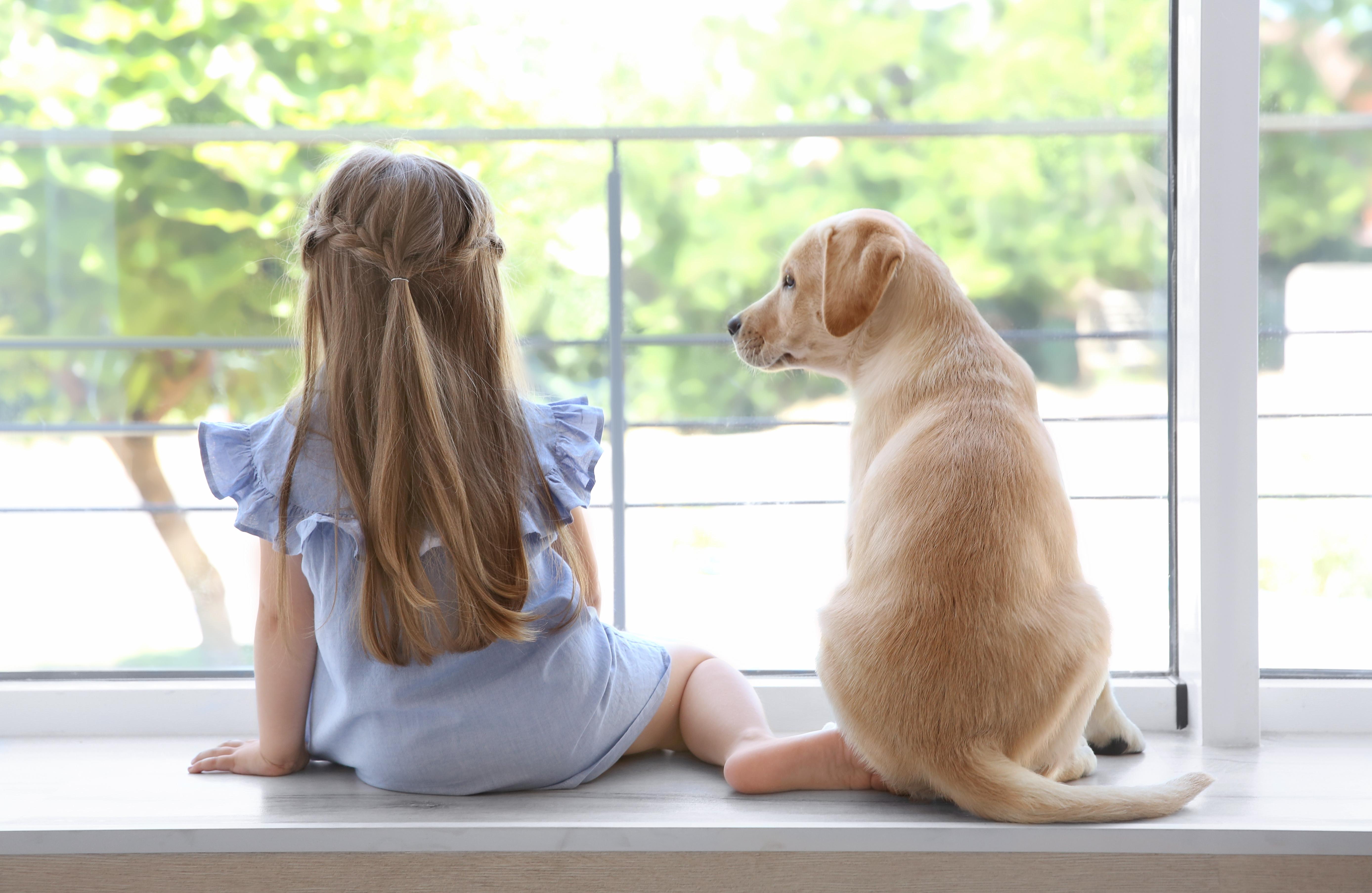 Mädchen mit Hund am Fenster