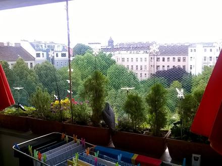 Eine fachgerechte Vernetzung kann Tauben von Balkonen fernhalten.