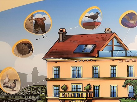 Quelle: Tierschutzombudsstelle Wien