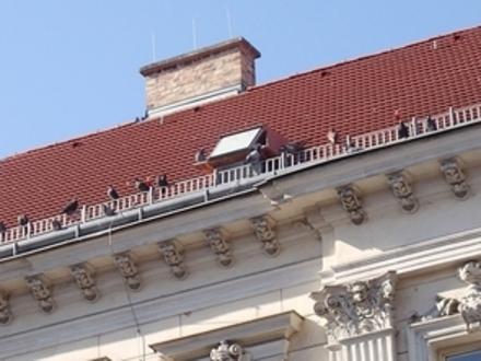 © Tierschutzombudsstelle Wien