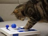 Zeit daheim: Zeit zum Spielen - Bild: © TOW|Koppensteiner