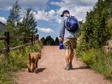 Wandern, Joggen & Co.: So läuft's mit Vierbeinern - Bild: ©Ann Lillie Kendall - stock.adobe.com