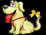 Neues Video für HundefreundInnen